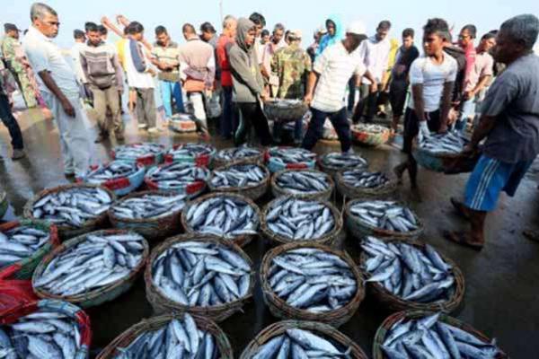 Nilai Tukar Nelayan Jatim Naik 0,35 Persen