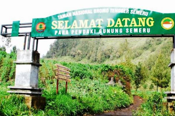 Para Pendaki Dilarang Peringati 17 Agustus di Puncak Gunung Semeru