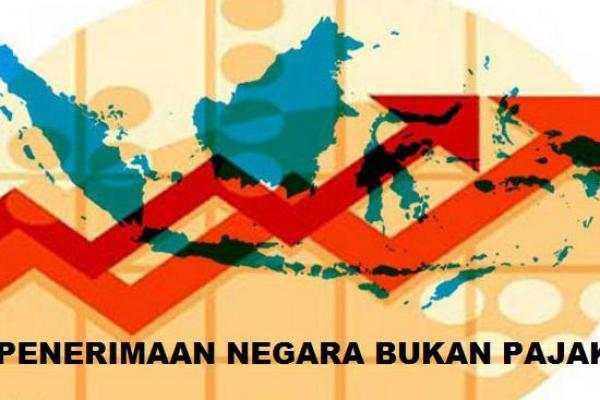 Revisi UU PNBP Disahkan, Kemenkeu Sederhanakan Jumlah Tarif PNBP