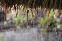 Suara Gemericik Hujan Dapat Menenangkan, Benarkah?
