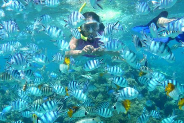 Turis Asal Jepang Tenggelam di Gili Air, Tim SAR Sisir Perairan Lombok Utara
