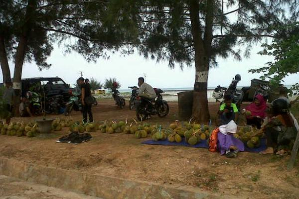 Caleg PKB Berjanji Perjuangkan Durian Natuna Masuk ke Pasar Ekspor