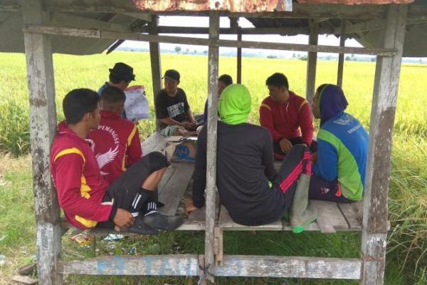Harianto Oghie Perkuat Dukungan ke Kelompok Tani di Pinrang