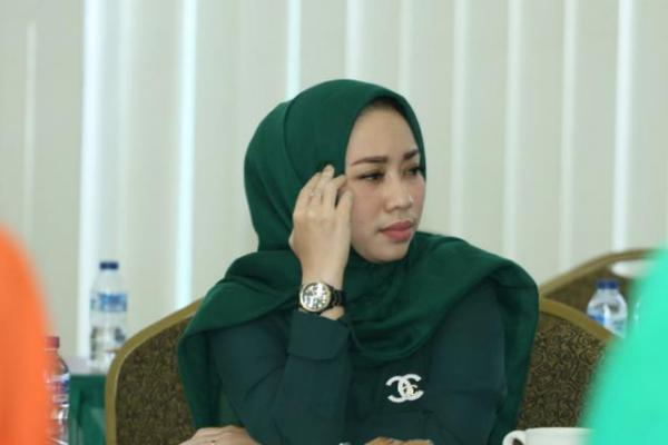 Lolos ke Senayan, Ratna Juwita Sari Ingin Ekonomi Kreatif Semakin Berkembang