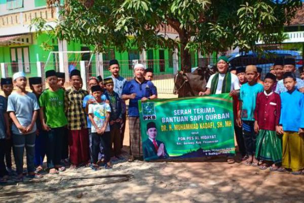 DPR RI Terpilih PKB, Muhammad Kadafi Qurban 29 Ekor Sapi