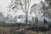 Presiden Jokowi Tinjau Lokasi Kebakaran Hutan di Riau