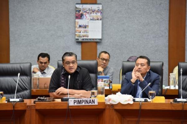 Komisi X DPR RI Segera Revisi UU Kepemudaan