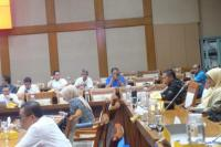 Komisi VII DPR RI Minta BP Berau Segera Rampungkan Kilang Tangguh Train-3