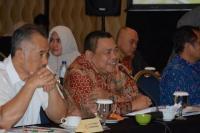 Komisi XI Dukung PT Geo Dipa Kembangkan EBT
