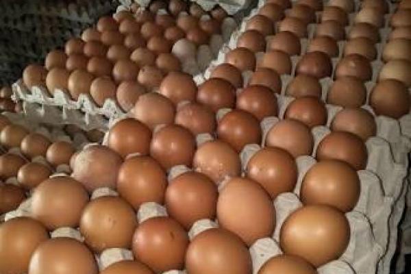 Penurunan Harga Beras dan Telur Picu Deflasi di Madiun