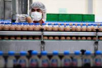 Pembangunan Kawasan Industri Halal Dipercepat