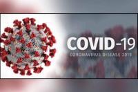 Update Data COVID-19 8 Agustus, Positif 2.277 Sembuh 1.749