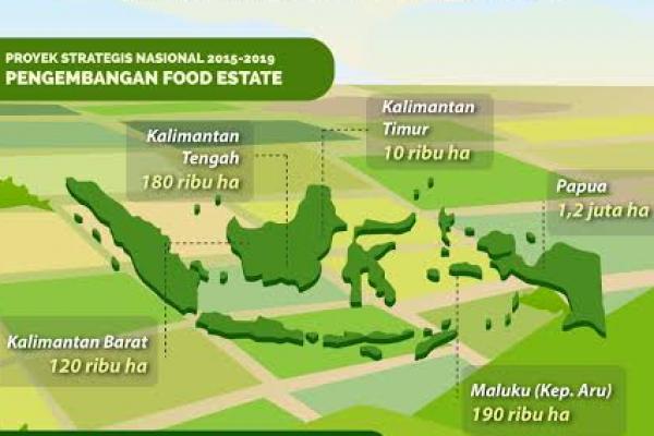 PUPR Target Pengembangan Food Estate di Kalteng Dimulai Oktober 2020
