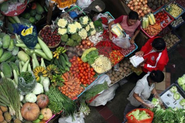Harga Produk Pertanian Dongkrak IHPB November