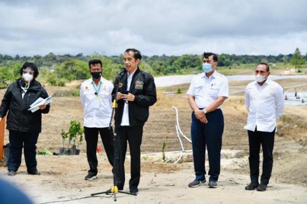 Presiden Jokowi Tinjau Kawasan `Food Estate` Baru di Sumut