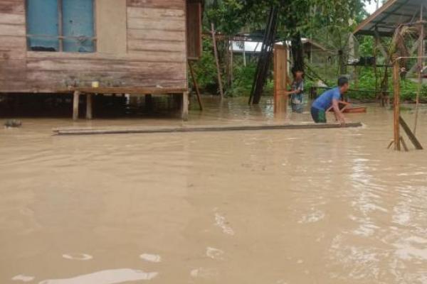 Sungai di Aceh Timur Meluap, 505 Jiwa Terdampak