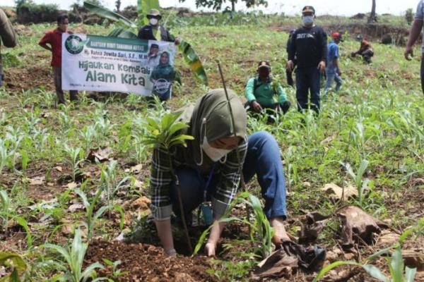 Ratna Juwita Ajak Masyarakat Tanam Pohon Untuk Menjaga Lingkungan