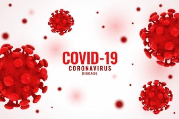 Kasus Sembuh COVID-19 di Indonesia Tambah 29.012, Positif 22.053