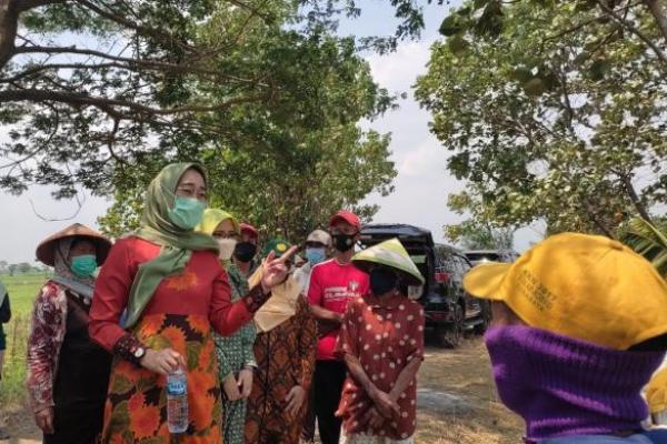Usut Penambangan Pasir di Desa Blaru Kediri, Anggia Minta Pemerintah Turun Tangan