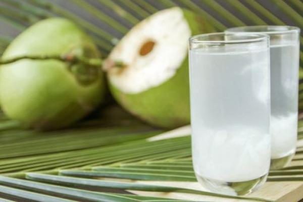 Ini Manfaat Minum Air Kelapa Murni untuk Kesehatan